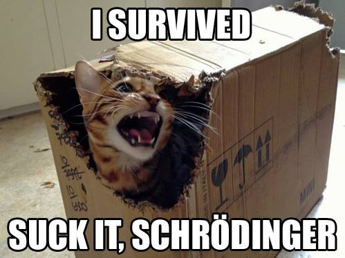 Oops! Schrodinger was wrong