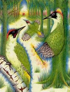 wpid-woodpecker
