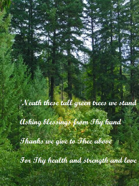 wicca | Adventures and Musings of an Arch Druidess | Page 16